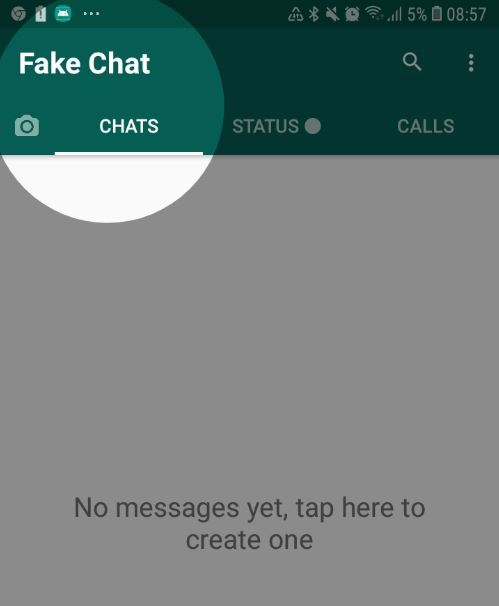 Fake Whatsapp Messages